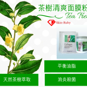茶樹清爽面膜粉